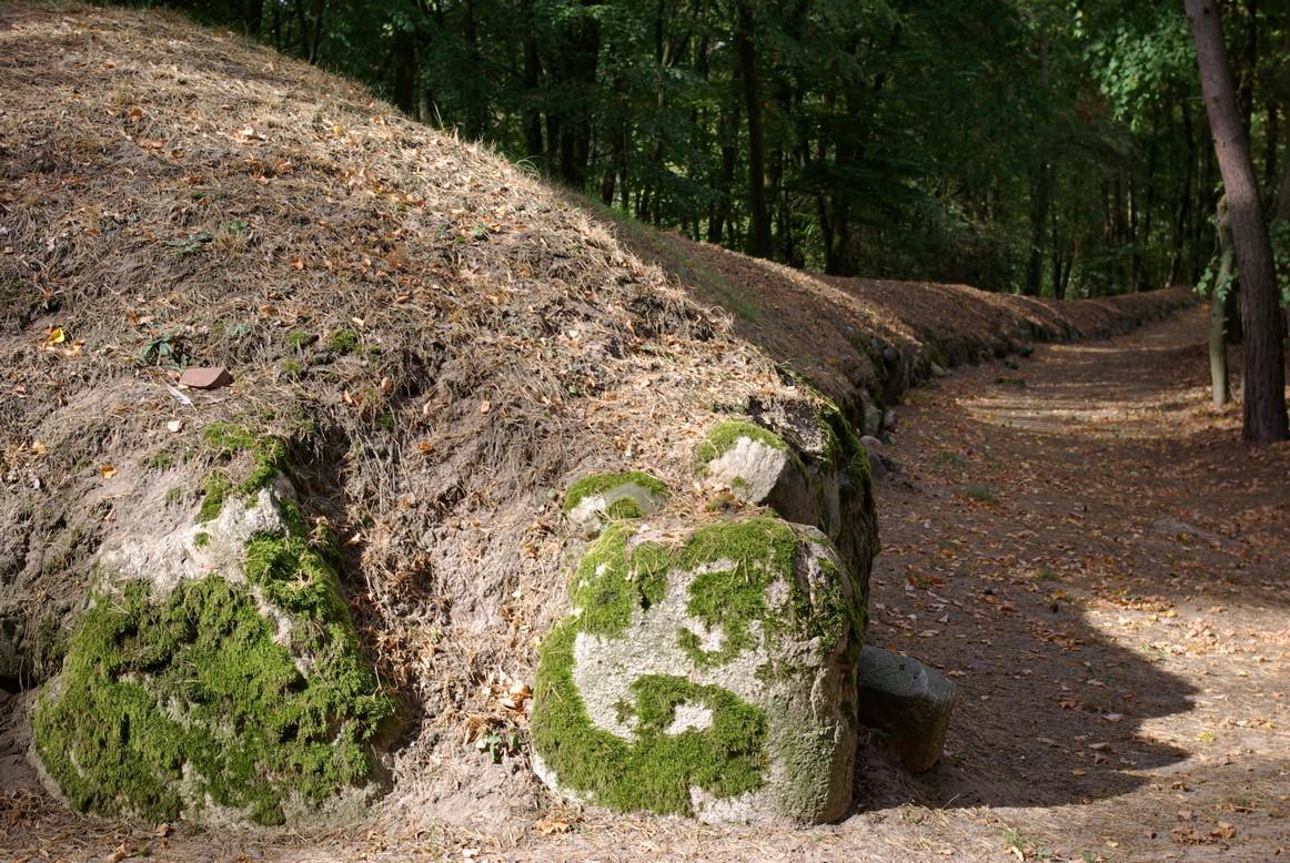 Fragment czoła grobowca, Park Kulturowy Wietrzychowice