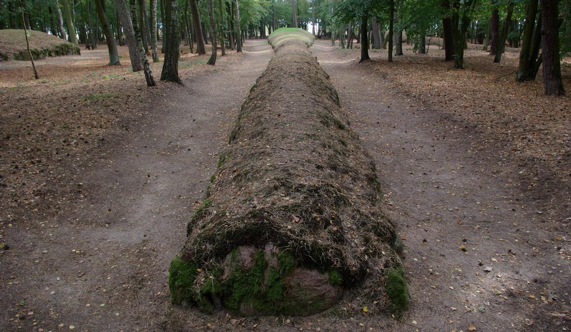 tył grobowca, Park Kulturowy Wietrzychowice