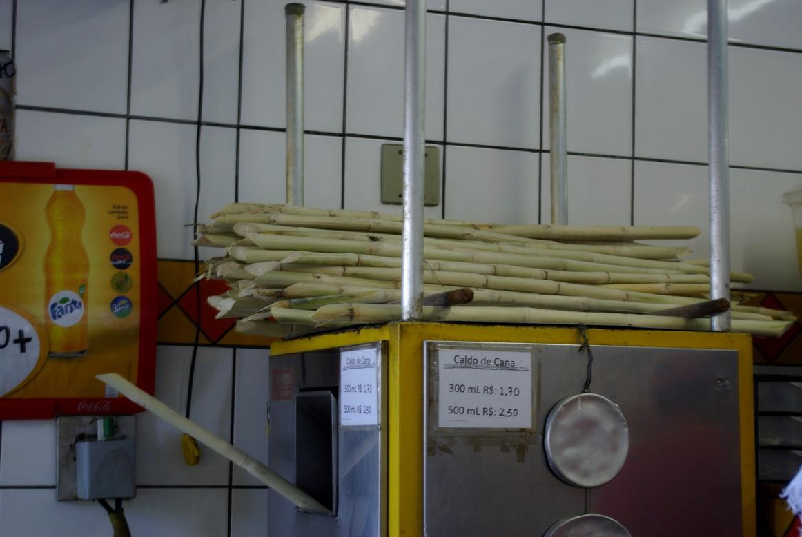 Trzcina cukrowa, Rio de Janeiro