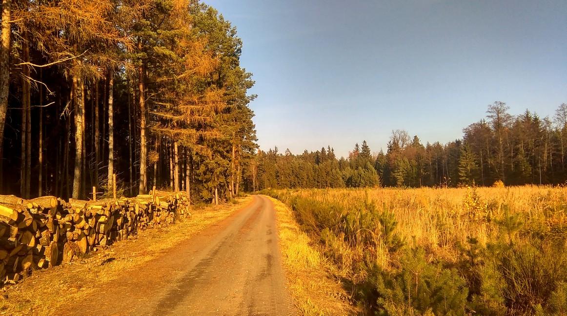 okolice Obornik Śląskich